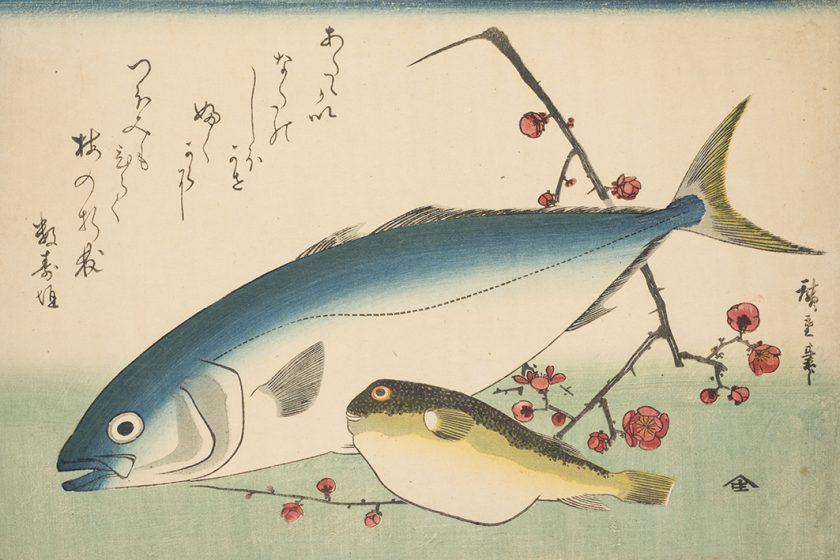 Zwei Fische und ein blühender Pflaumenzweig